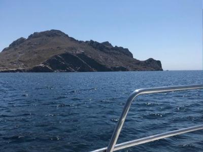 Ruta en barco con fondo de cristal en Águilas Niño