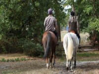 two riders riding horses