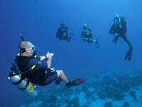Diving instructor during the dive