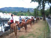 Rotte dei cavalli negli addii