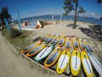 Sup equipment next to the beach in Pontevedra