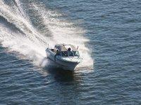 navega con total libertad