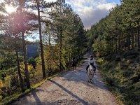 Horseback riding through Villanovilla
