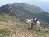 通过Villanovilla骑马