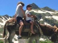 Enjoying a donkey ride through the Pyrenees