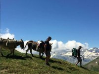 Donkey ride through Villanovilla