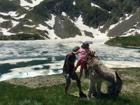 Donkey ride next to a lake in the Pyrenees