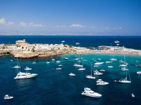 Excursions to Tabarca