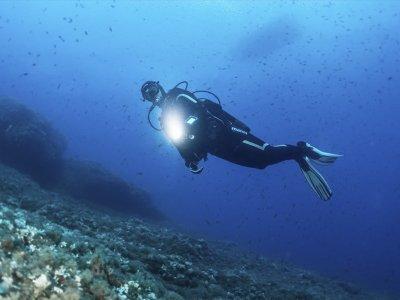 托萨德马尔夜间潜水课程2天