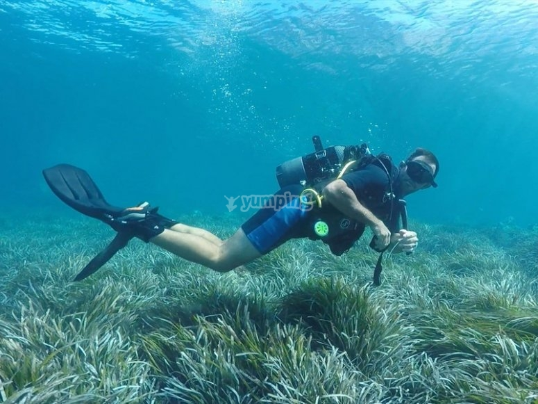 Trying a PADI diving course