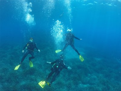 Open Water Diver Course in Cabo de Gata Reserve