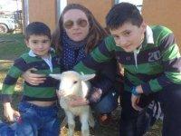 Con la ovejita