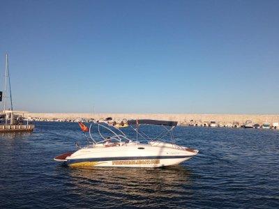 Paseo en barco para avistar delfines Fuengirola 2h