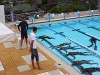 Apnea and activities in the pool