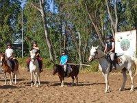 准备骑马游览
