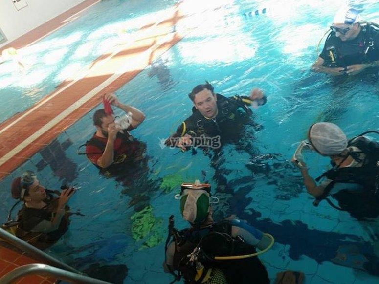 发现游泳池潜水课程