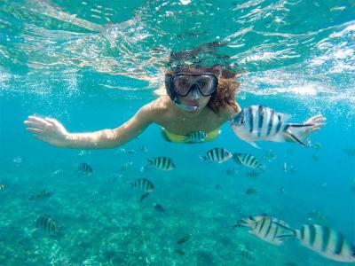 在Rincónde la Victoria浮潜课程4小时
