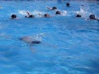 Compartiendo piscina