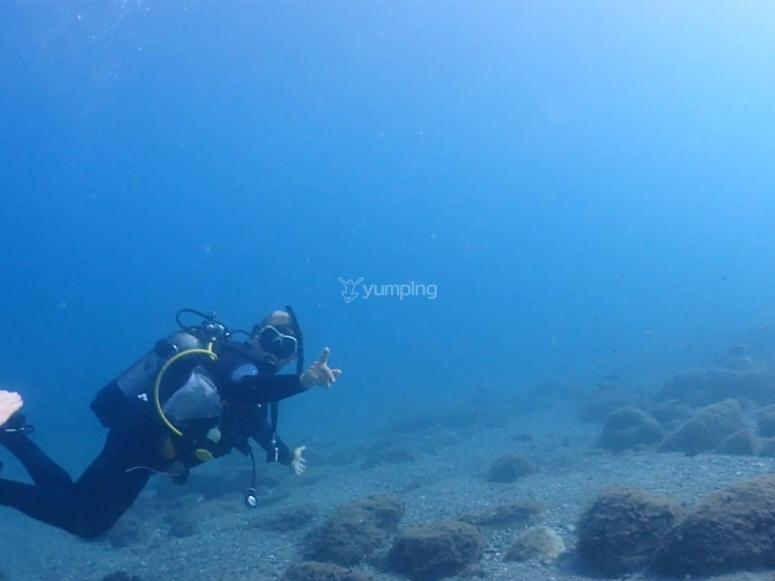维多利亚港的潜水员课程