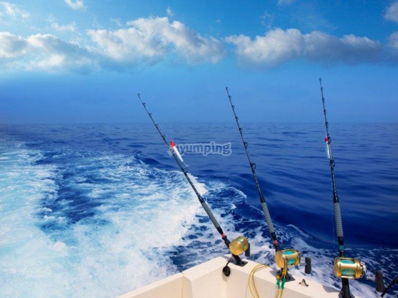Pesca por la Bahía de Mallorca