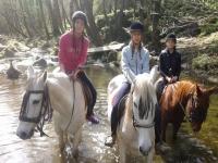 在Cardedeu附近的河上骑马
