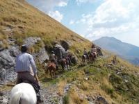 在巴塞罗那的马背上的石路径