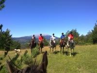 巴塞罗那骑马团体