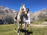 在田野里宠爱马匹