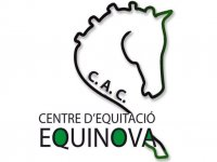 Equinova Campamentos Hípicos