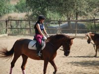 骑马营地的学生