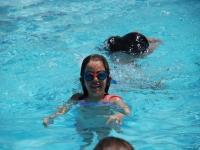 骑马营地中的游泳池