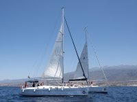 Navigation for cetacean sighting