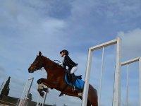 Clases de salto en equitación