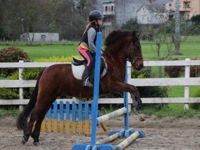 Clases equitación en Ortigueira bono de 10 clases