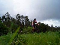 Lasciando il boschetto in bici