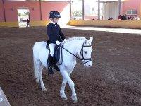 Clase de equitación para competir