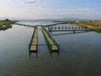 Pasarelas en el Delta del Ebro