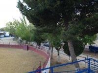 Plaza de tenas在塔兰孔