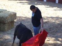 在塔兰孔与小母牛斗牛