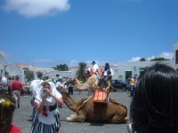 Boda y camello