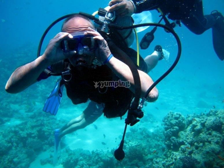 LaAzohía的潜水