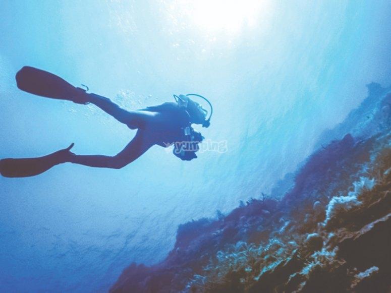 在公海的潜水实践