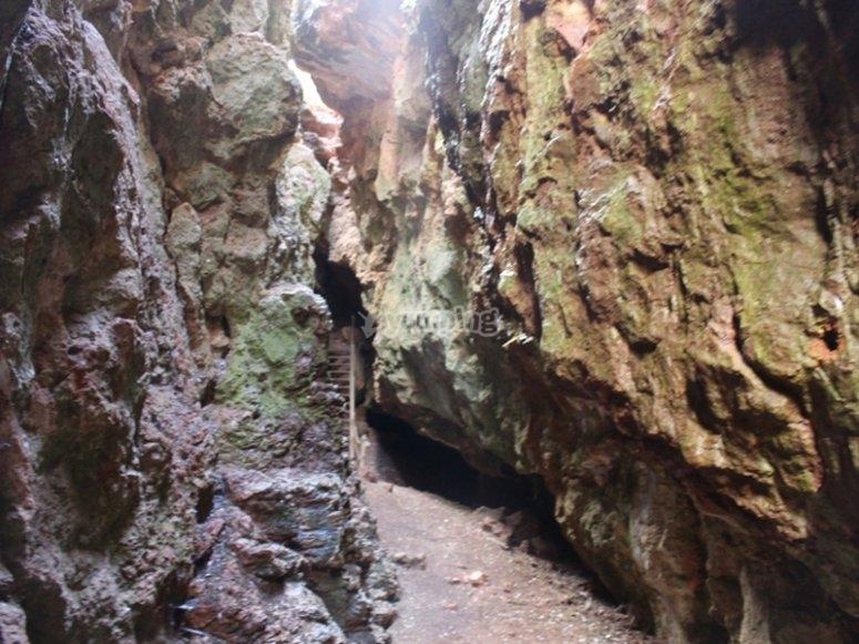 Dans le canyon de la Quebrada del Toro