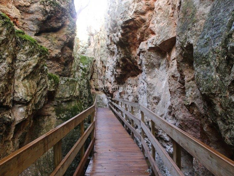 Trekking à travers la Quebrada del Toro