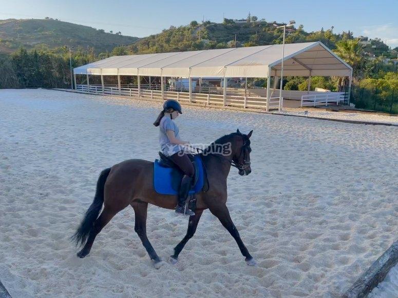 Giornata con i cavalli