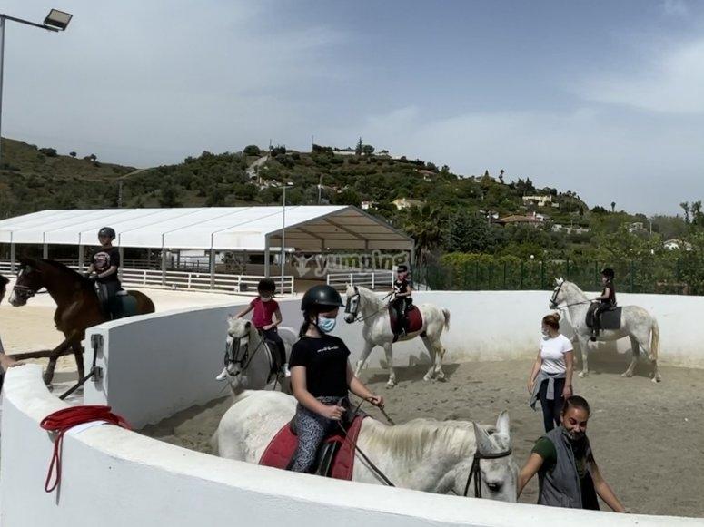 Campo di equitazione estivo