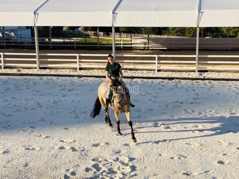 Equitazione a Malaga