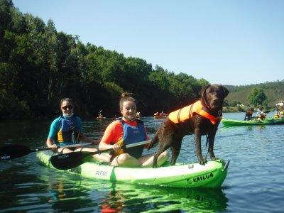 Eiras Vigo水库中的狗带皮划艇路线