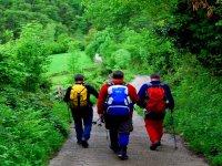 Excursiones de senderismo