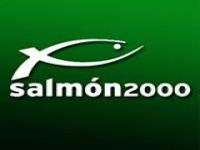 Salmon 2000